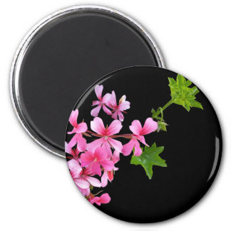 shades of pink on black 2 inch round magnet