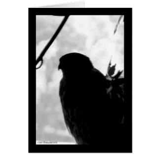 Shadow Hawk Card