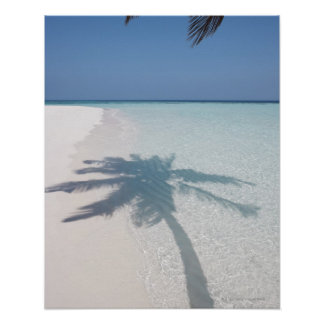 Shadow of a palm tree on a deserted island beach poster