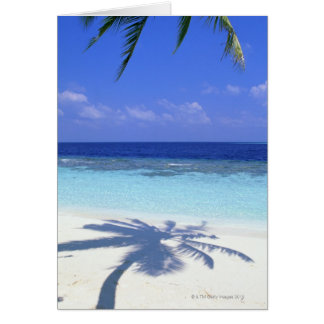 Shadow of Palm Tree Card