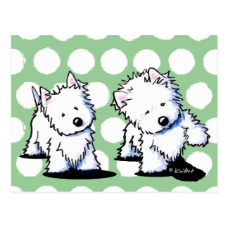 Shadowboxing Westies Postcard