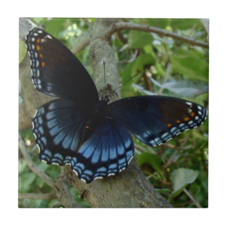Shadowed Blue Butterfly Tile