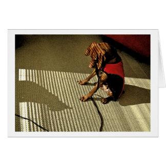 Shadowplay 1 card
