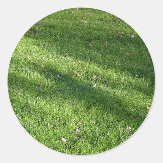 Shadows in the Grass Classic Round Sticker