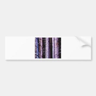 shadows of pole woods bumper sticker