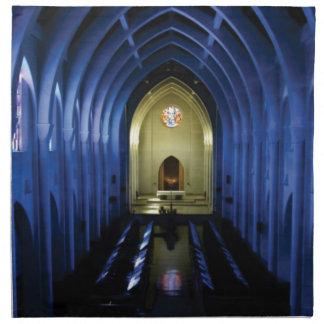 shadows of the dark blue church napkin