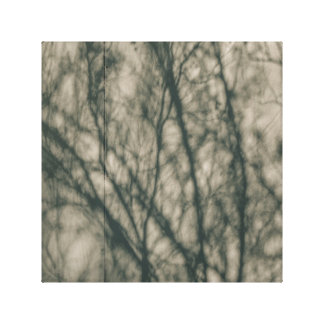 Shadows of Winter Foliage Canvas Print