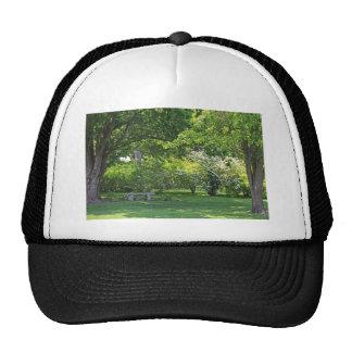 Shadows Under the Tree Trucker Hat