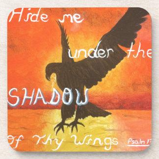 shadowwings coaster