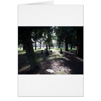 Shadowy Cemetery Card