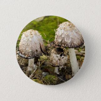 Shaggy mane 1 2 inch round button