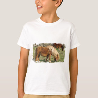 Shaggy Shetland Pony Kid's T-Shirt