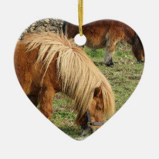 Shaggy Shetland Pony Ornament