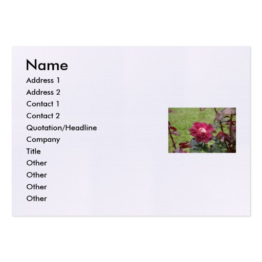 Shakespeare Sonnet # 18 Business Card Template