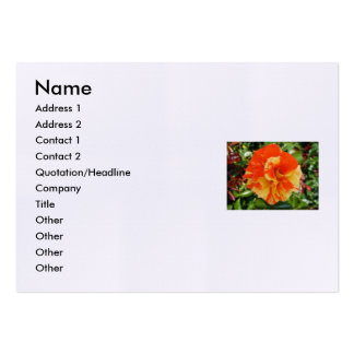 Shakespeare Sonnet # 18 Large Business Card