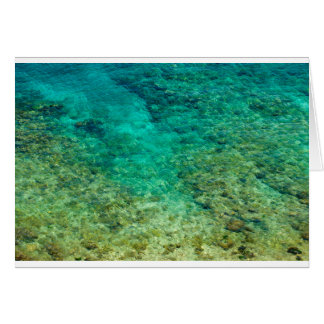 Shallow clear water with coral card