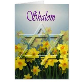 Shalom - Passover card with Star of David