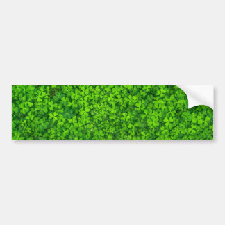 Shamrock Clovers Green Irish Symbol Ireland Bumper Sticker