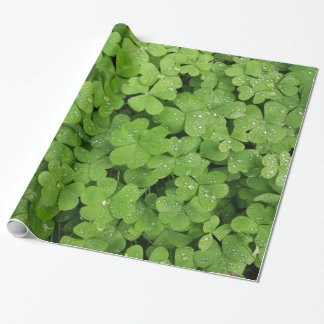 Shamrock green clover raindrops wrapping paper