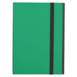 Shamrock Green Color Background Ireland Green iPad Air Cover