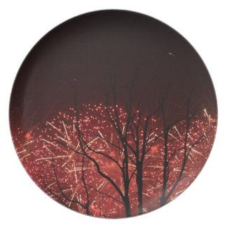 Shanghai Worlds Fair Fireworks Plate