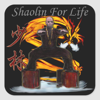 Shaolin Dragon Monk Square Sticker