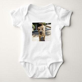 Shar_pei_3 Baby Bodysuit