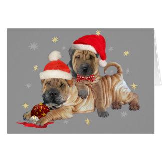 Shar-pei brothers Christmas Cards