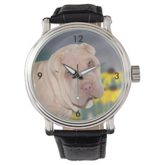 Shar Pei face Watch