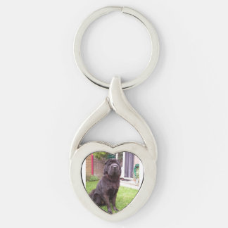 Shar pei longhair sitting Silver-Colored twisted heart keychain