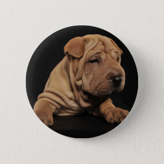 Shar Pei puppy 2 Inch Round Button