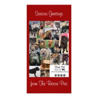 Shar Pei Rescue Xmas Card Photo Card