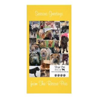 Shar Pei Rescue Xmas Card Photo Cards