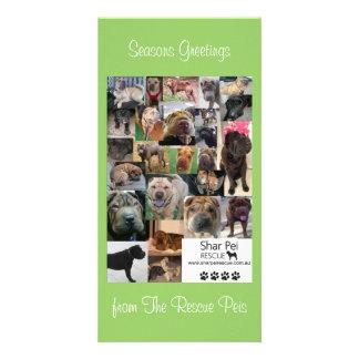 Shar Pei Rescue Xmas Card Customized Photo Card