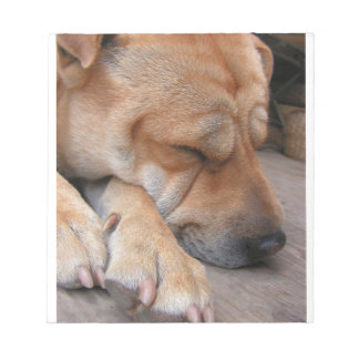shar pei sleeping notepad