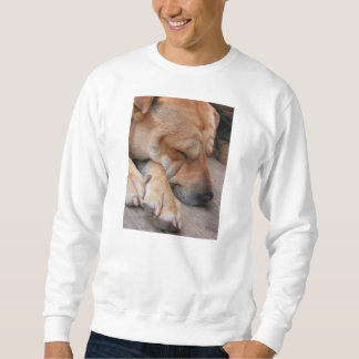 shar pei sleeping sweatshirt