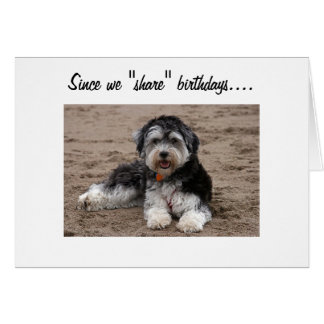 SHARE BIRTHDAYS-WANNA SHARE SOME FUN? CARD