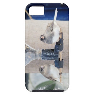 Sharing iPhone 5 Cover