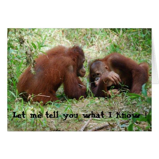 Sharing  Gossip Orangutan Friends Card