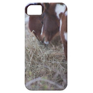 Sharing iPhone 5 Case