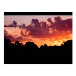 Sharing Sunsets Postcard