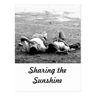 Sharing the Sunshine Postcard