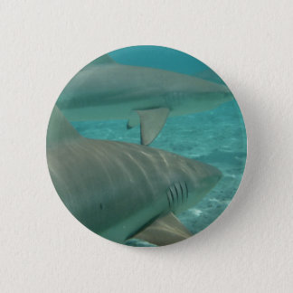 shark 2 inch round button