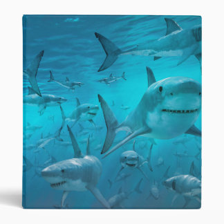 shark 3 ring binder