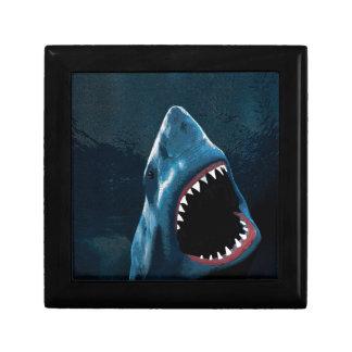 Shark attack gift box
