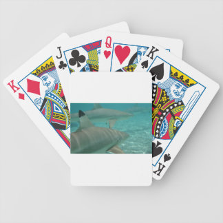 shark bicycle playing cards