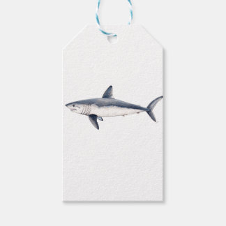 Shark cailon pack of gift tags