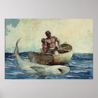 Shark Fishing, 1885 Poster