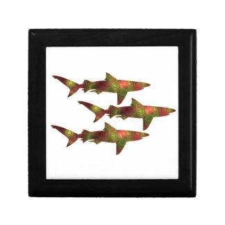 Shark Frenzy Gift Box