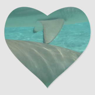 shark heart sticker